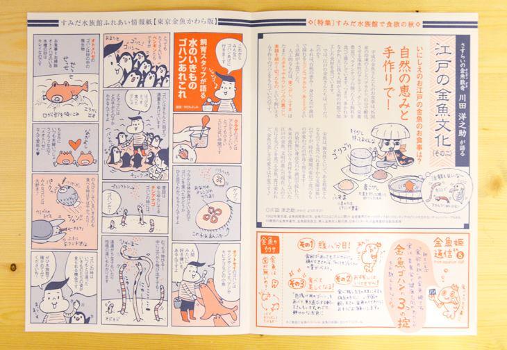 2015金魚・秋 (1)
