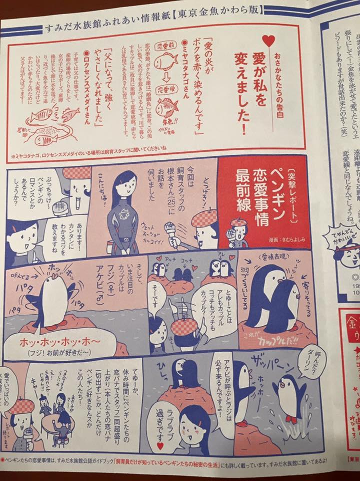 東京金魚かわら版:2015冬号 チラシ制作